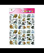 Jättitarra-arkki kissat
