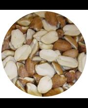 Pähkinä