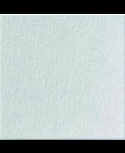 Seinälevy taru 03 255