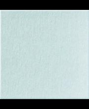 Seinälevy  taru 05 255