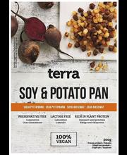 Terra 300g soija-pytti...