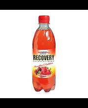 Leader Recovery 500ml Mansikan- ja vadelmanmakuinen proteiini-hiilihydraattijuoma palautusjuoma