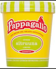 Pappagallo 0,5L Sitruunasorbetti