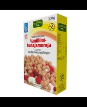 Virtasalmen Viljatuote 300g gluteeniton vanilliini-hunajamuro