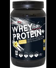 Leader Sports Nutrition Whey Protein Plus 600g vaniljanmakuinen heraproteiinijauhe urheiluravinnne
