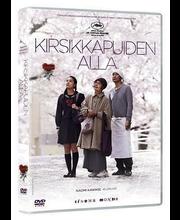 Dvd Kirsikkapuiden Alla