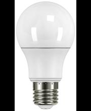 Airam LED 6W vakiokupu A60 E27 2700K 470lm 25 000h