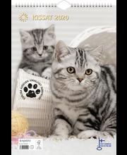 Seinäkal kissat