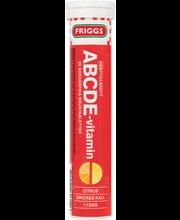 Friggs 20kpl ABCDE-pore