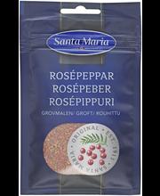 Rosépippuri Rouhittu 16G