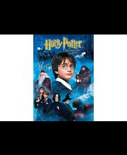 Harry Potter ja viisasten kivi DVD