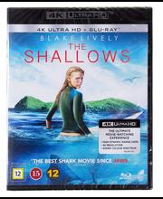4k shallows