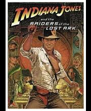 Dvd Indiana Jones-Kadonn