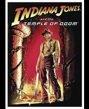 Dvd Indiana Jones-Tuomio