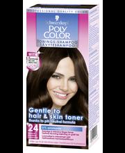Poly Color 24 Tummanru...