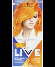 Live Ultra Brights 108...