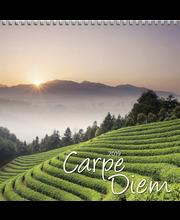 Seinäkalenteri 2019 carpe