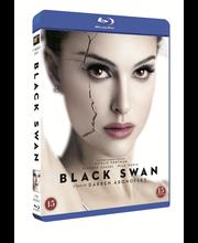 Bd Black Swan