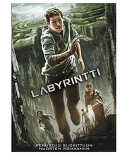Dvd Labyrintti