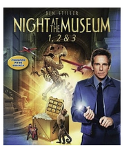 Bd Night At The Museum