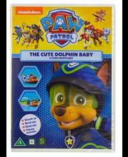Dvd Paw Patrol 11