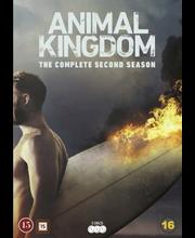 Dvd Animal Kinddom 2 Kau