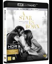 4K A Star Is Born