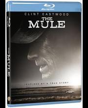 Bd Mule