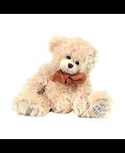 Bukowski My First Teddy