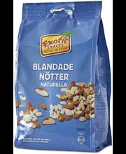 Exotic Snacks Pähkinäsekoitus Naturel 350g