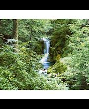 Idealdecor valokuvatapetti Waterfall in Spring 00279, 8-osainen, 366 x 254 cm