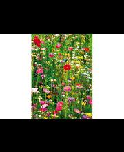 Fototapetti flower 00375
