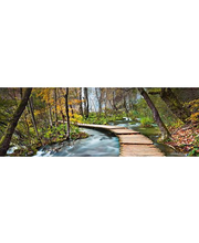 Idealdecor valokuvatapetti Path into  the Forest 00436, 4-osainen, 366 x 127 cm