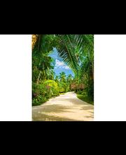 Idealdecor valokuvatapetti Tropical Pathway 00438, 4-osainen, 183 x 254 cm