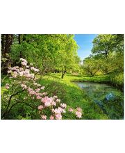 Idealdecor valokuvatapetti Park in the Spring 00136, 8-osainen, 366 x 254 cm