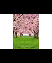 Idealdecor valokuvatapetti Cherry Trees 00385, 4-osainen, 183 x 254 cm