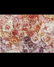 Fototapetti flower 00147