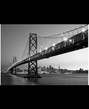Idealdecor non-woven valokuvatapetti San Francisco Skyline 00958,  8-osainen,  366 x 254 cm mustavalkoinen