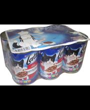 Latz 6x400g 6-pack Sekalajitelma Hyytelössä lajitelma 4 varianttia kissanruoka