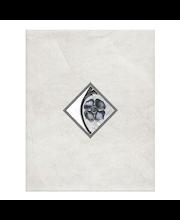 ABL Kuvalaatta Marmi Naturale  grigio 20x25 v.harmaa