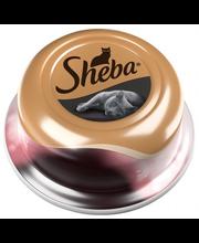 Sheba Luxuries 80 g Merellinen coctail täydennysrehua aikuisille kissoille
