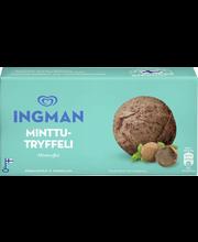 Ingman 1LT / 487g jäätelö kotipakkaus Minttu sukklaa tryffeli