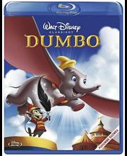 Bd Dumbo