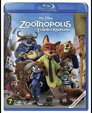Bd Zootropolis
