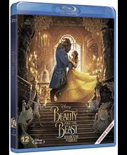 Bd Beauty & The Beast