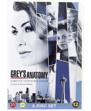 Dvd Greyn Anatomia 14