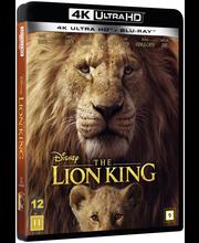 4K Lion King