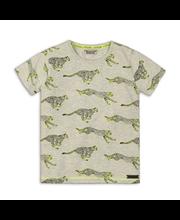 DJ Dutchjeans lasten gepardi t-paita C34190