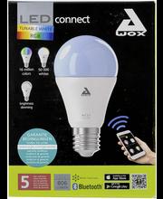 Eglo Connect LED-älylamppu 9W E27 RGBW himmennettävä