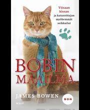 Bowen, James: Bobin maailma - Viisaan kissan ja katusoittajan myöhemmät seikkailut kirja